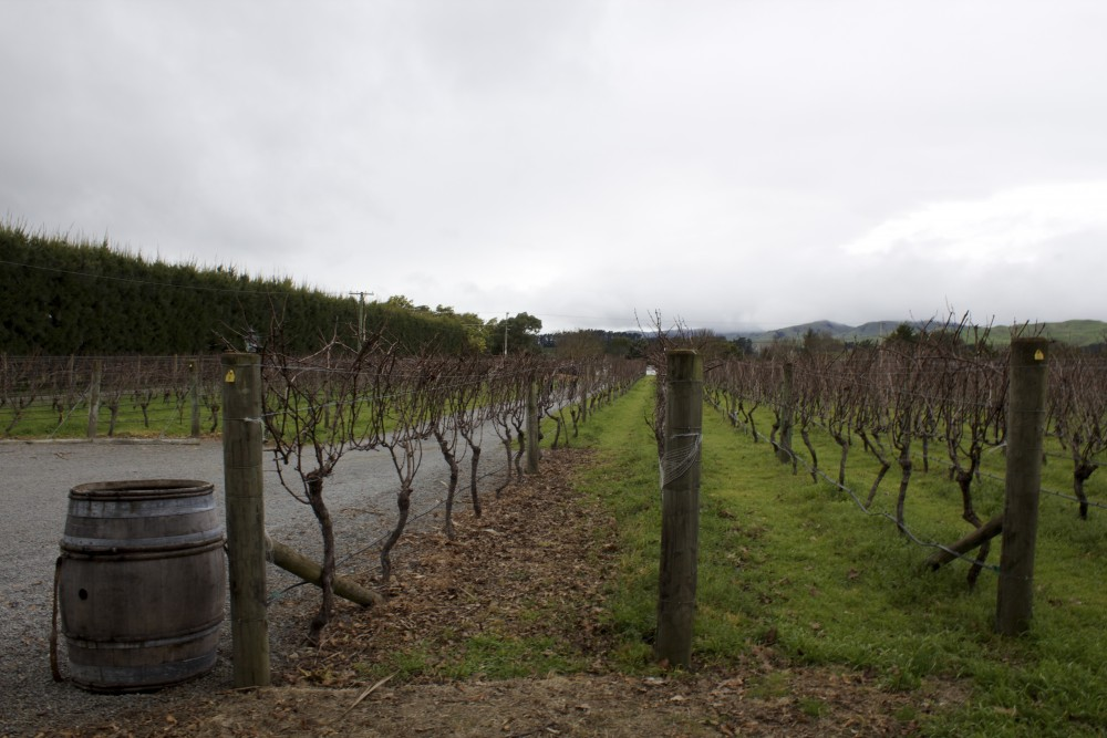 roadtrip-new zealand-outnabout-vinsmagning