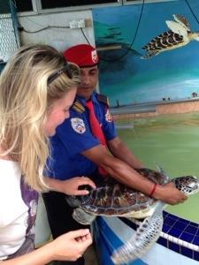 skildpadder-malaysia.jpg