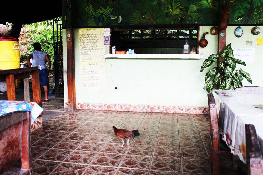 høne-restaurant
