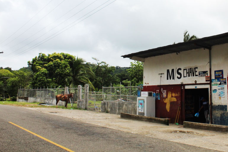 hest-ved-shop