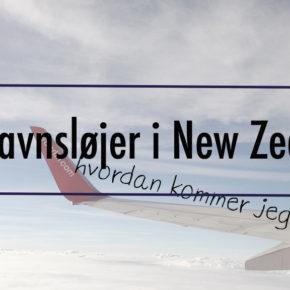 Igennem en lufthavnskontrol i New Zealand