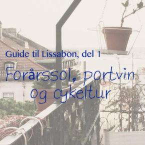 Guide til Lissabon, del 1: Forårssol, portvin og cykeltur