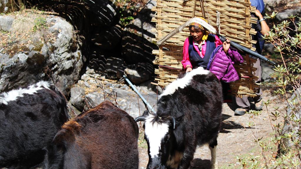 outnabout-nepal-himalaya24
