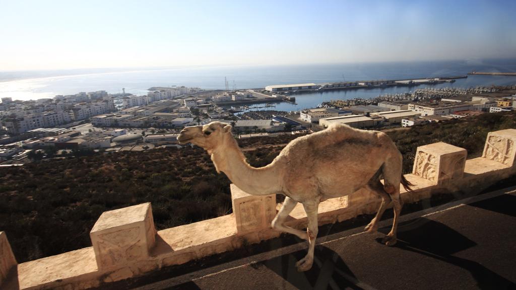 outnabout_marokko-agadir10